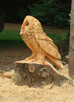 owl-carving